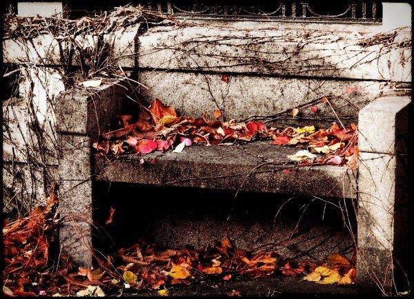 autumn-in-the-graveyard-2
