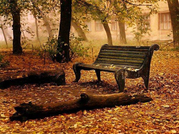 Nature-Wallpaper-Autumn-Fall11