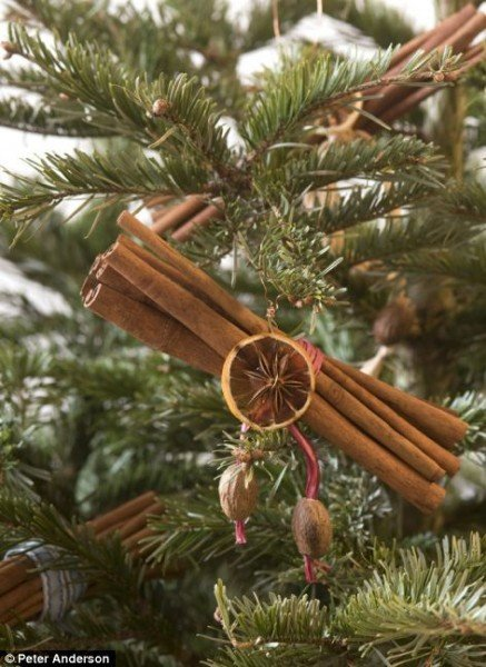 natural-diy-christmas-ornaments