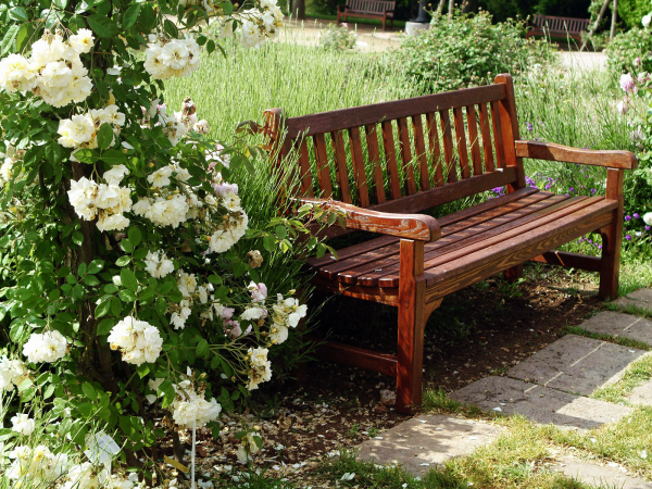 Garden Bench wAL tangledwing