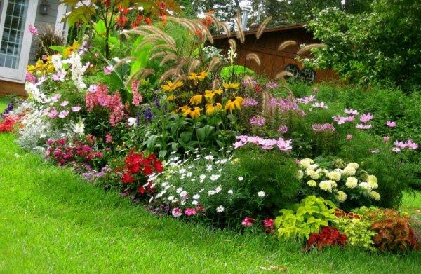 gardening-designs-picture