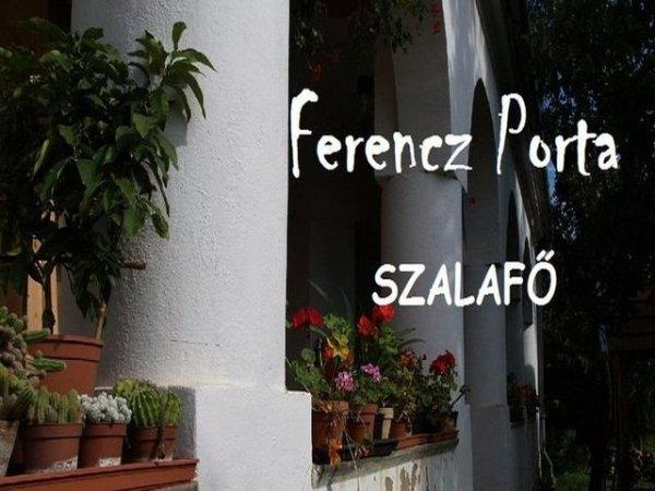 ferencz-porta-1