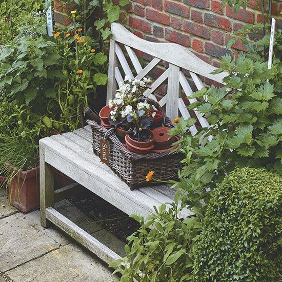 Bench-surrounded-by-green-plants-housethome.co.uk