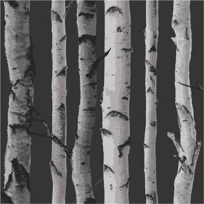 BLACK GREY SILVER - FD31052 - BIRCH TREE - FOREST WOODS - FINE DECOR WALLPAPER