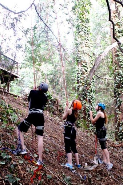 Tree-Climbing7